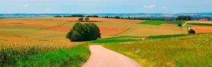 В случае смерти владельца земли, закон предполагает снятие обременения с участка, если они имелись ранее