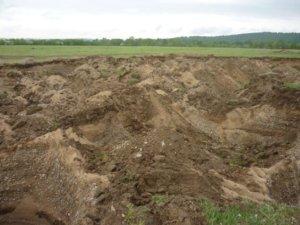 К землям запаса относят далеко не все заброшенные земельные участки