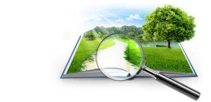 Самый простой способ узнать кадастровую стоимость участка - воспользоваться услугами сайта Росреестр