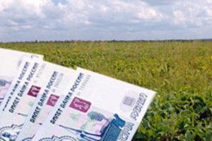 При оформлении земельного надела возникнет потребность уточнить его кадастровую стоимость