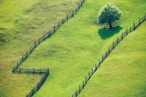 Дарение земельного пая