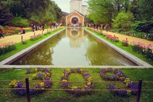 Филиал Ботанического сада МГУ — «Аптекарского огорода»