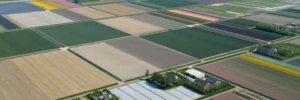 Если нет средств владельцу земли можно выполнить оформление участка, а межевание произвести позже, в случае необходимости