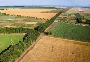 Возводить дома на земельных участках, расположенных на полях не разрешается