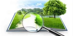 Если земле уже присвоен кадастровый номер, то ее стоимость можно узнать обратившись в отделение Роснедвижимости