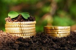 Сколько стоит приватизация земли