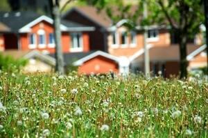 Обязательно ли проводить межевание земельного участка