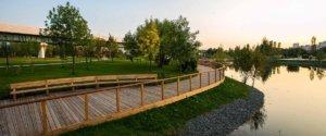 Детский ландшафтный парк Южное Бутово